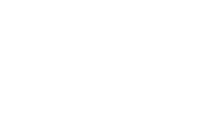 A white version of the Ankeny SummerFest logo.